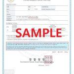 韩国无犯罪证明laps report